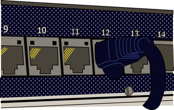Patch Panel Graphic