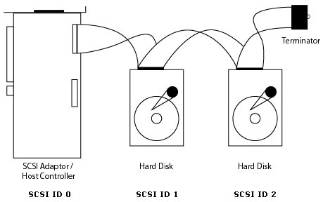 Figure 1 - A simple SCSI chain