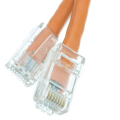 Cat6 Orange Ethernet Patch Cable, Bootless, 1 foot - Part Number: 10X8-13101