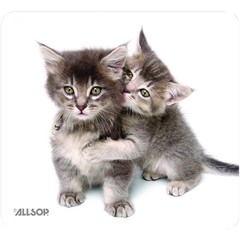 Mouse Pad, Kittens - Part Number: 90D5-01116