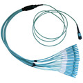 Plenum Fiber Optic Cable, 100 Gigabit Ethernet CFP/CXP 100GBase-SR10 to MTP(MPO)/LC (10 Duplex LC) 24 inch Breakout Cable, OM3, 50/125, 3 meter thumbnail